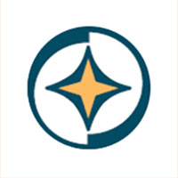 29thICINS-logo